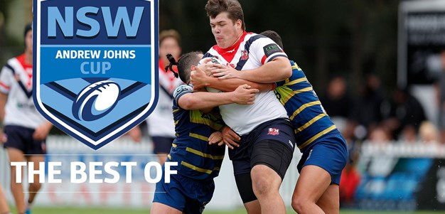 Andrew Johns Cup | Best runaway tries