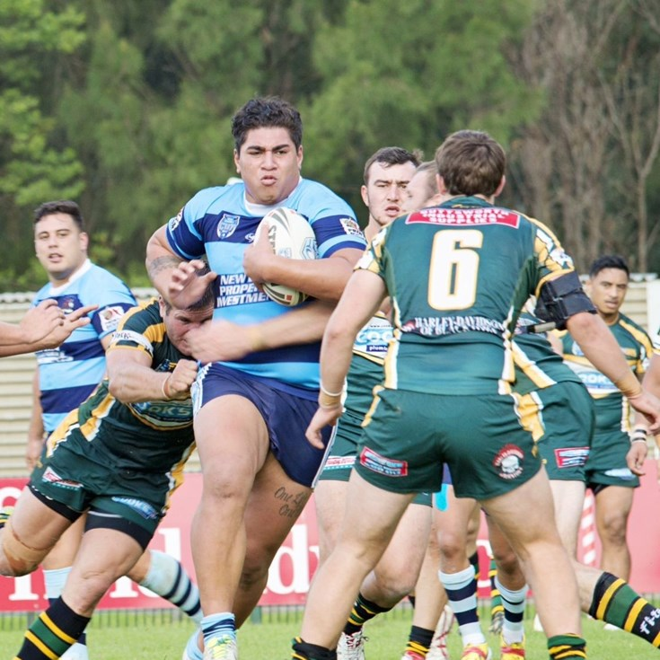 Ron Massey Cup and True Blue Chemicals Sydney Shield Results - Round Four