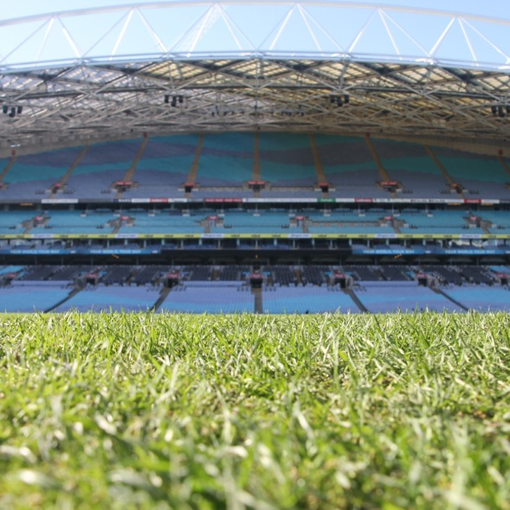 Groundsman Expecting 'Fast' ANZ Surface