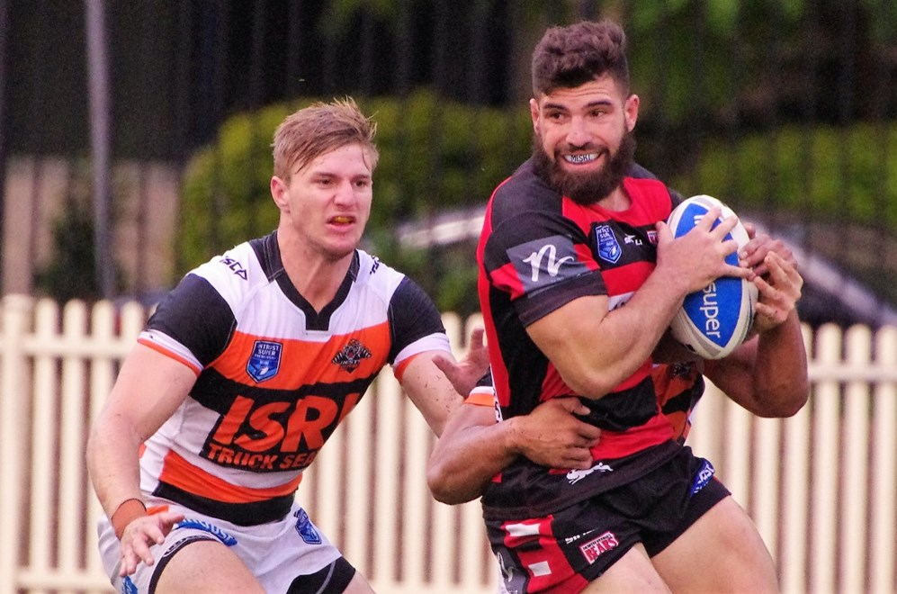 The North Sydney Bears host the Wests Tigers in Round 5 of the Intrust Super Premiership NSW. Image: David Napper.