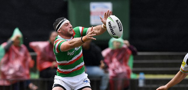 Team in Focus | South Sydney Rabbitohs
