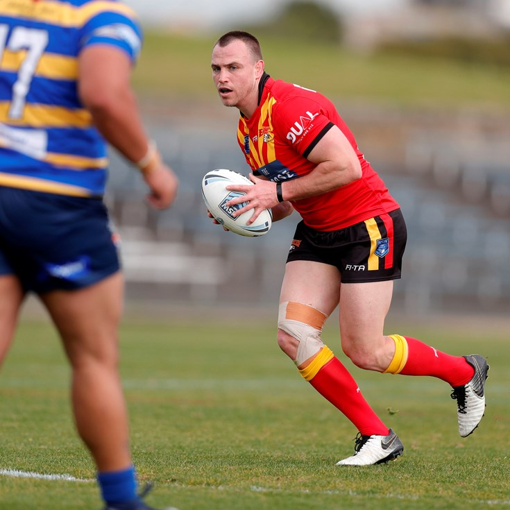 Buhrer's battle of the birds in Sydney Shield